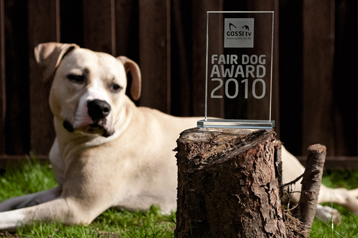 Der Fair Dog Award